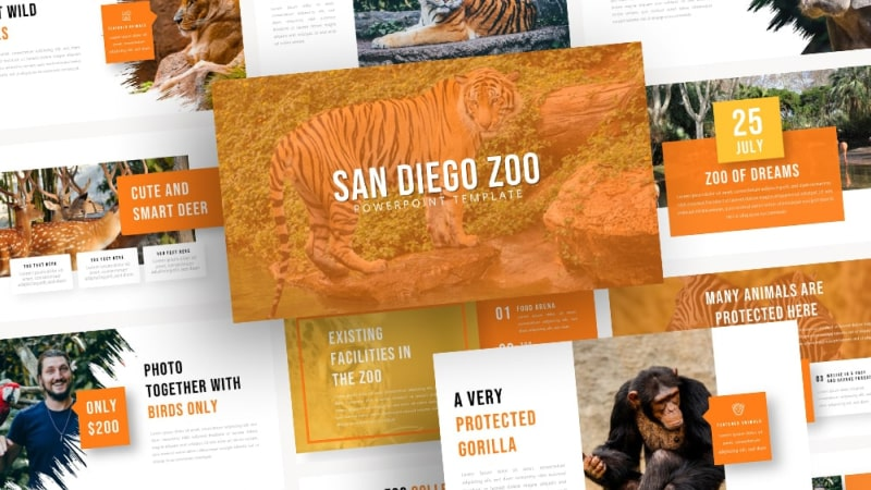 Free-San-Diego-Zoo-ZOO-Powerpoint-Template
